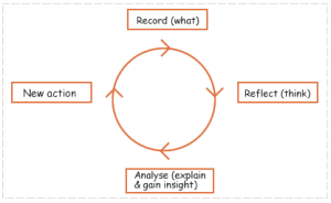 The reflection cycle:  The aim of reflection is to develop an action cycle where reflection leads to improvement and / or insight.